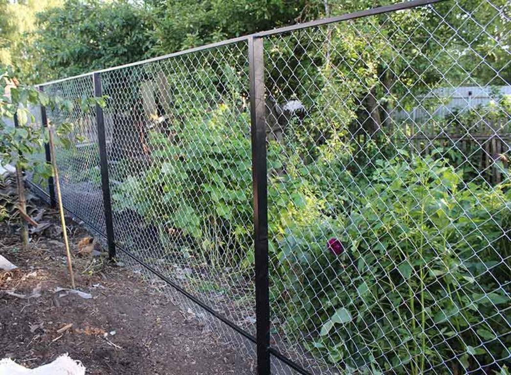 фото забор из сетки рабицы своими были, будьте
